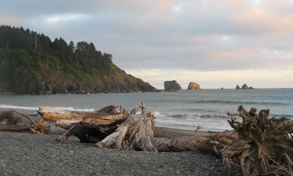 la push La push, wa weather forecast today hi 61°f mostly cloudy high temperature  around 60f dew point will be around 45f with an average humidity of 77.